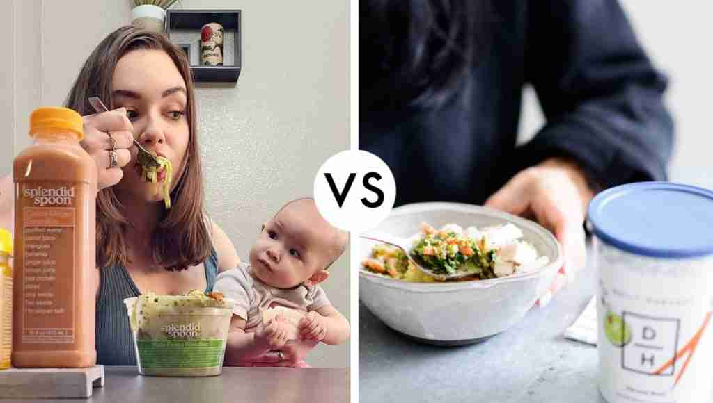 vegan meal delivery Splendid Spoon vs Daily Harvest