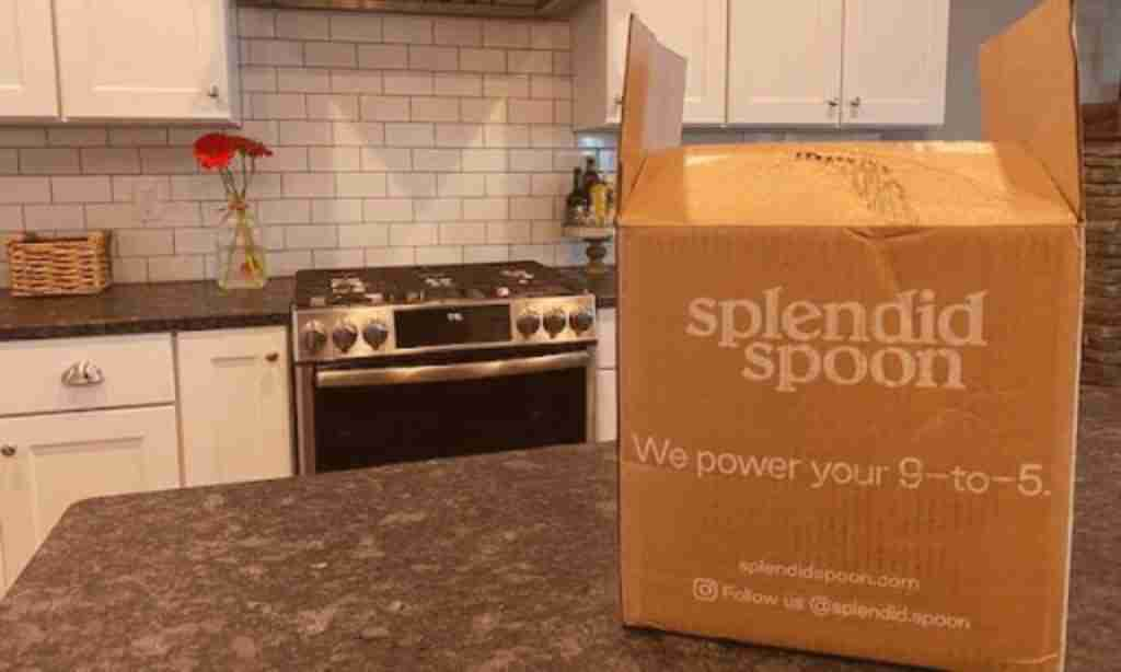 sizing up splendid spoon's delivery box