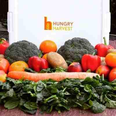 seasonal and fresh veggies by hungry harvest