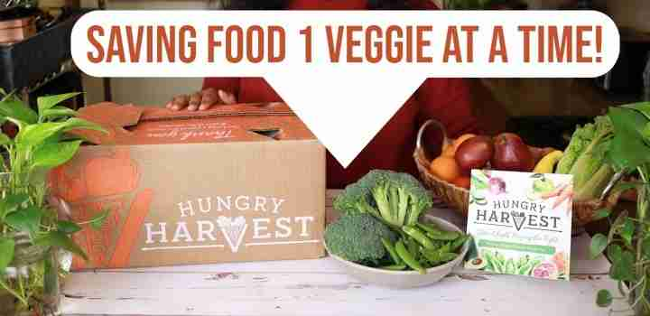subscription box by hungry harvest
