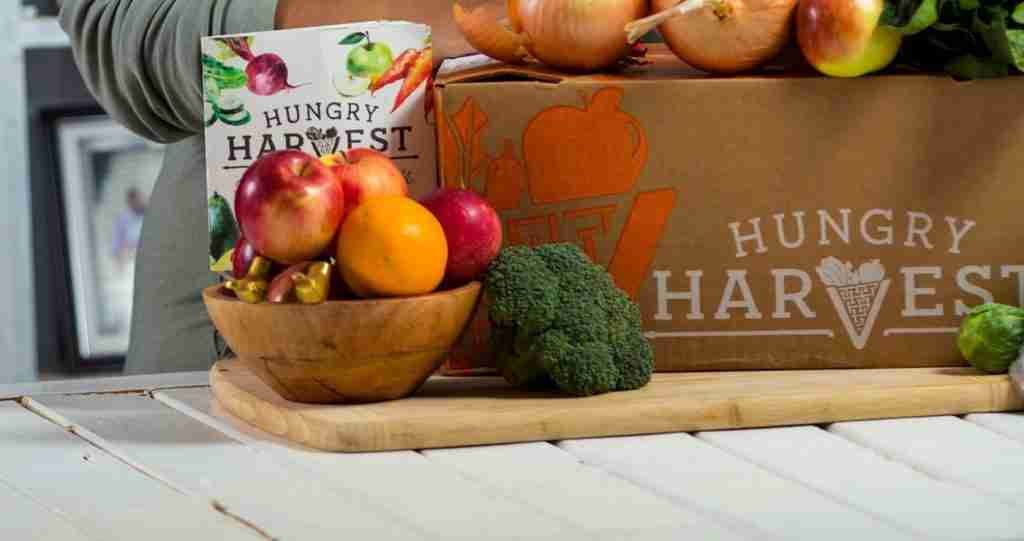 hungry harvest featured image review