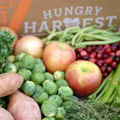 hungry harvest review