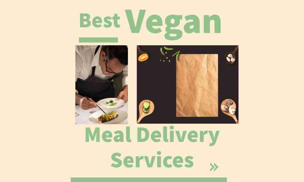 top plant based and vegan meal delivery services