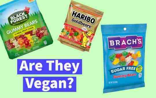 """""""are they vegan"""" text and gummy bears"""