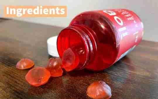 ingredients acv gummies vegan