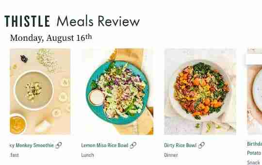 reviewing thistle meal plans