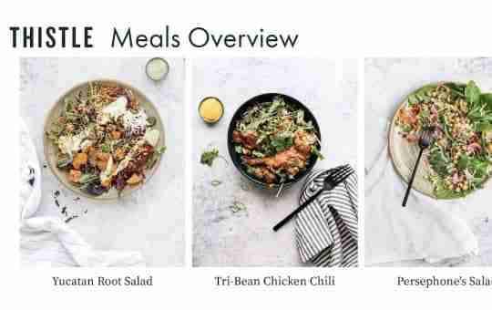 THISTLE meals overview