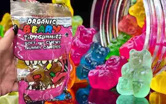 Trader Joe's gummy bears - are they vegan?